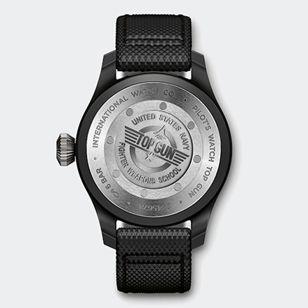 IW502001 Watch Back