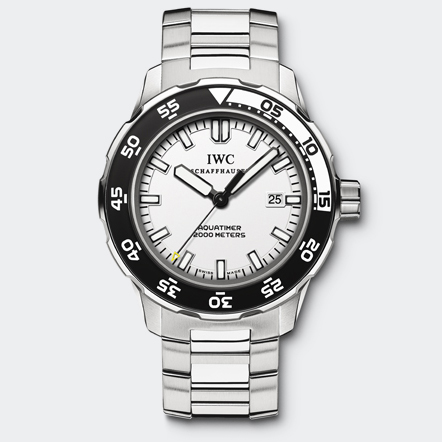 IW356809 Watch Front